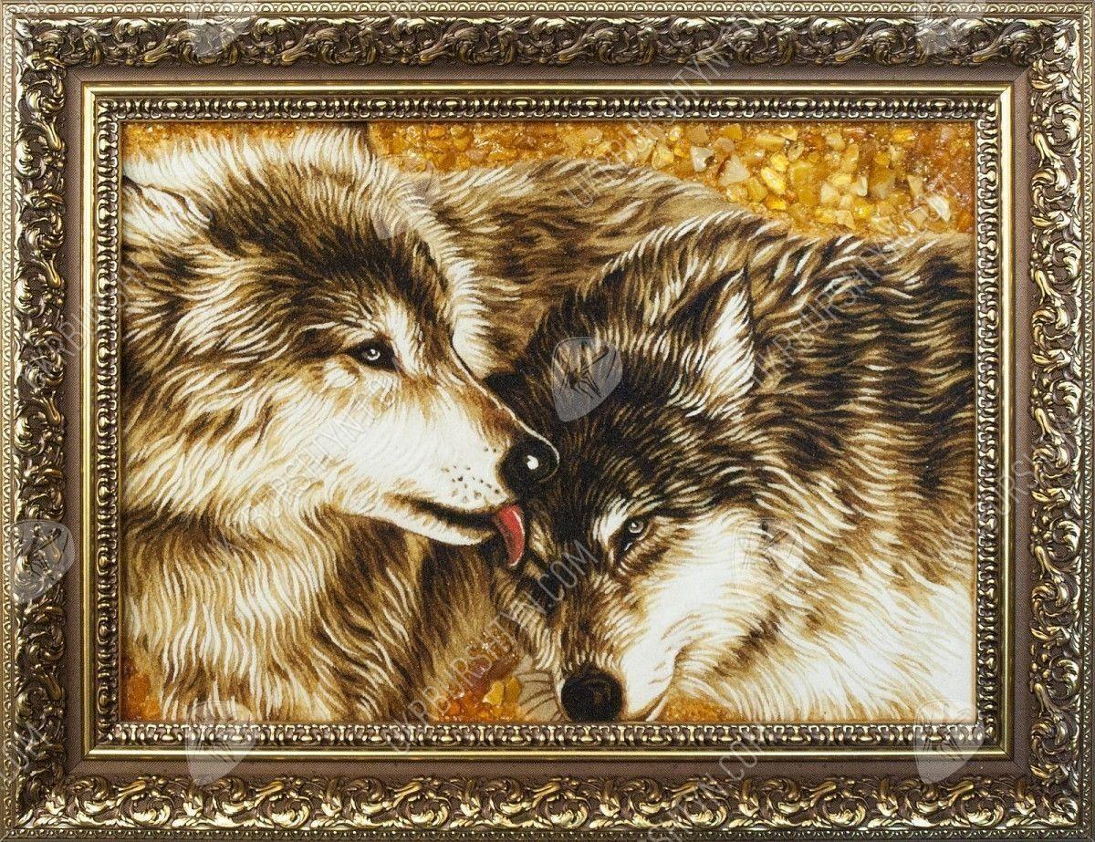 Картинки волк и волчица  Фото мир природы